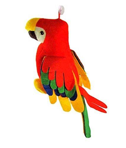 DSD Musical Parrot